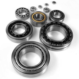 SKF W6305-2RS1